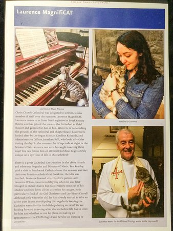 Christ Church Cathedral: Story of the Cathedral Cat