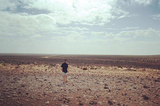 写真Shark Bay World Heritage Discovery and Visitor Centre枚