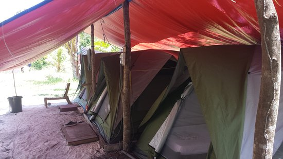 Tropical Research And Conservation Centre: Our tents