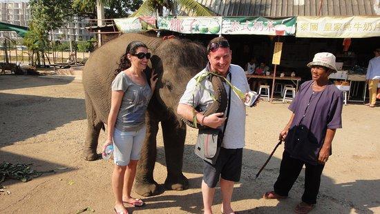 หมู่บ้านช้างพัทยา: Pattaya Elephant Village