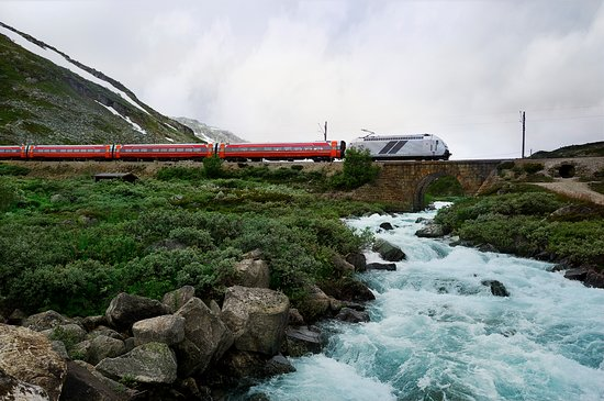 The Bergen Railway