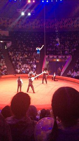 Kazan Circus: Обезьяны