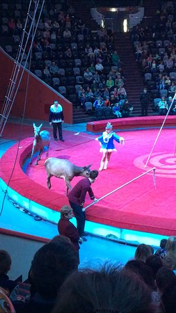 Kazan Circus: Клоуны