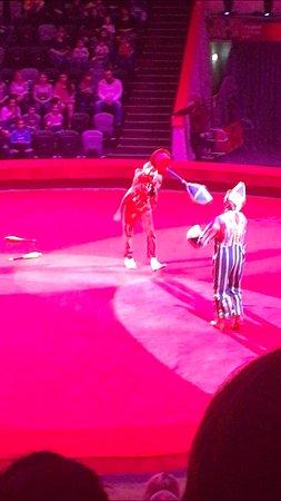 Kazan Circus: Собаки