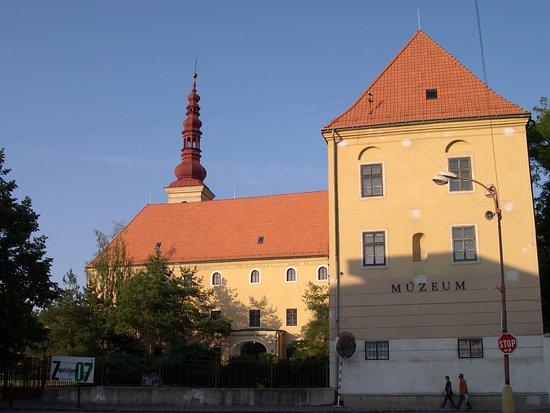 Zapadoslovenske muzeum
