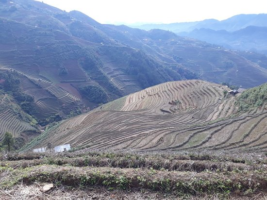 Sapa Hmong Treks