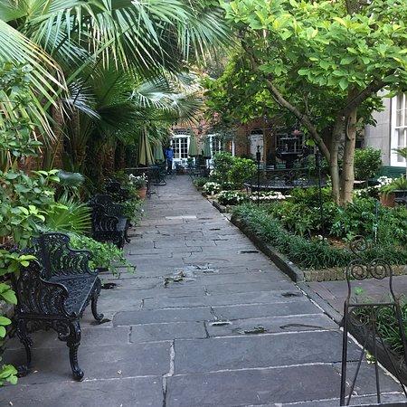 Cafe Amelie: The garden