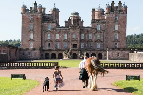 Blackstone Clydesdales & Dig-a-Day Experience: Maytime with farmer John at Drumlanrig Castle