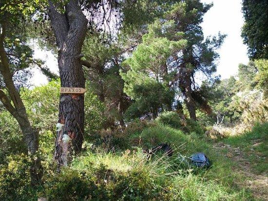 Steni Dirfyos, Görögország: Μονοπάτι προς Βράχο Στενής