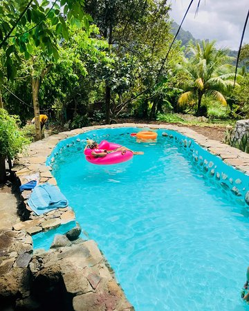 we have a salt water swimming pool. - Picture of Bush Bar ...