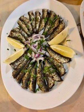 Aivali : sardine