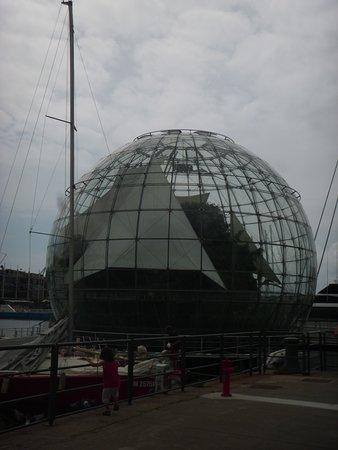 Aquarium of Genoa: biosfera