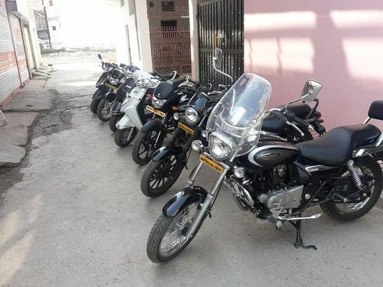 Krip Bike Rentals