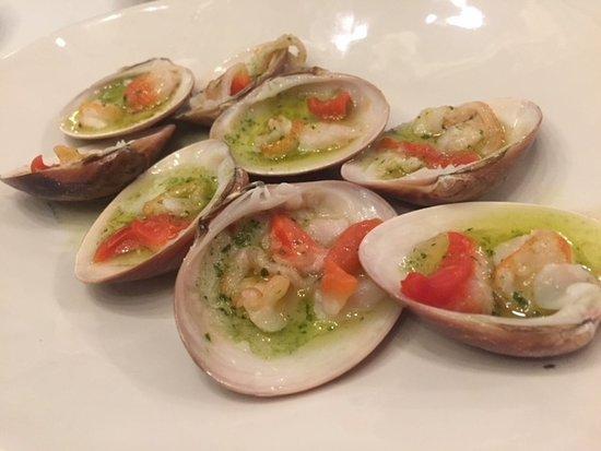 Lobito de Mar Marbella: conchas