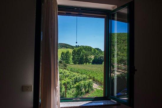 Cisterna d'Asti, Italy: view from the b&b