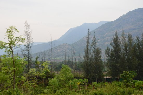 Theni District, Indien: Inside the farm