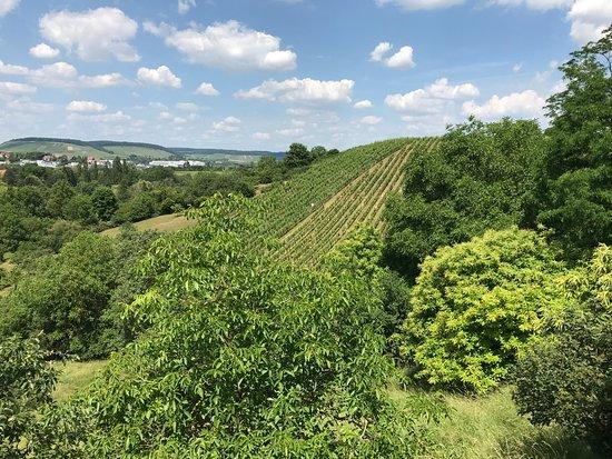 Gutsgaststatte Rappenhof: Schöne Aussichten 1