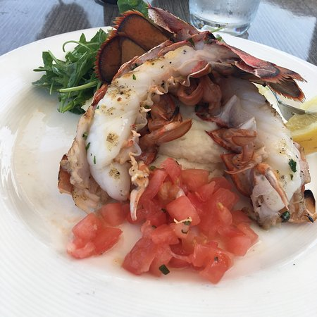 Lobster Shop Photo