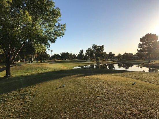 Sun City, AZ: nice view from tee