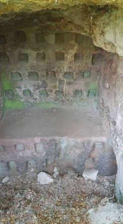 Casino di caccia dei Farnese: COLOMB