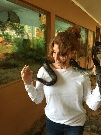 Snake Park: Young python wrapped around my neck.