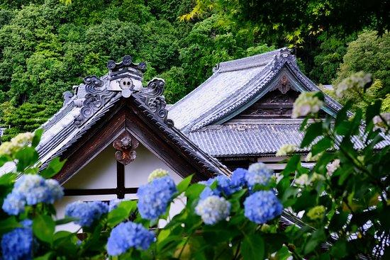 Yokokuji Temple