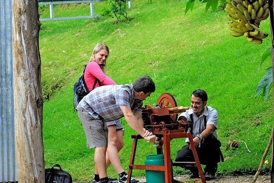 Monteverde Tours CR