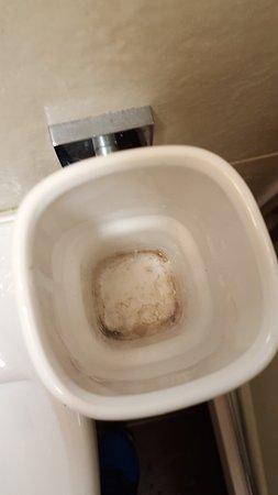 Adelphi Hotel: Toothbrush holder in bathroom