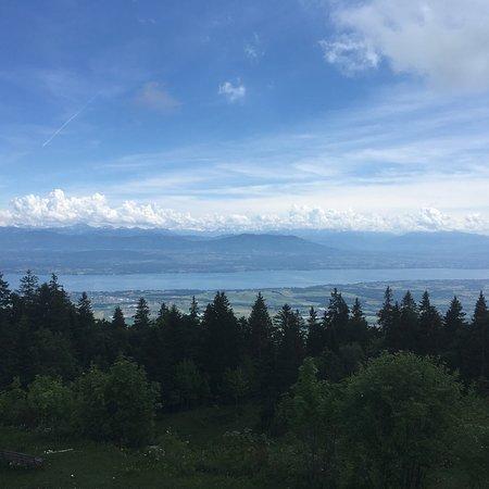 Gingins, Switzerland: photo0.jpg