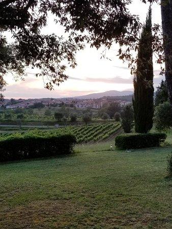 Villa Saulina Foto