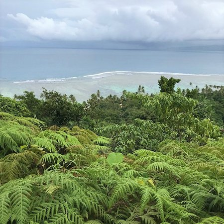 Qamea Island, Fiji: This is the view from the Waruka overlook. Bit of a scramble and jungle crashing, but an epic vi