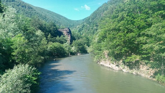 Parcul National Defileul Jiului: valley
