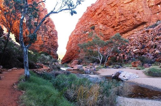 Halv dag MacDonnell Ranges Private...