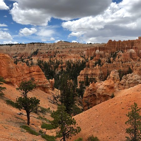 canyon trail rides bryce canyon nationalpark aktuelle 2018 lohnt es sich. Black Bedroom Furniture Sets. Home Design Ideas