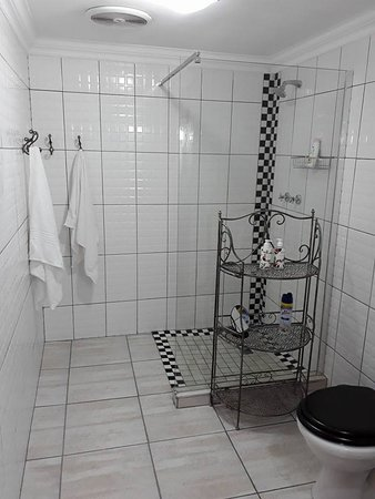 Newcastle, Sudáfrica: Spaciouce batheroom with walk in shower