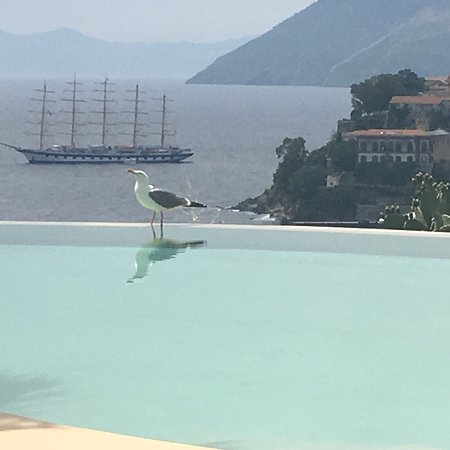 Hotel Villa Enrica - Country Resort: photo0.jpg