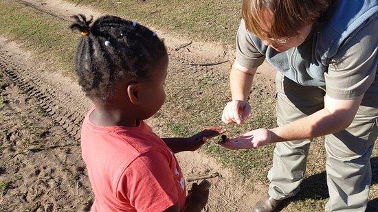 Great Brak River, Sydafrika: Learning about tok tokkies..