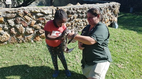 Albertina, South Africa: Holding snakes...