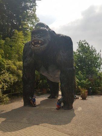 Wookey Hole, UK: 20180604_125340_large.jpg