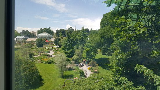 conservatoire et jardin botaniques de la ville de geneve garden - Jardin Botanique Geneve