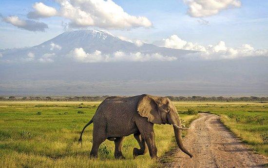 Karen, Kenya: getlstd_property_photo
