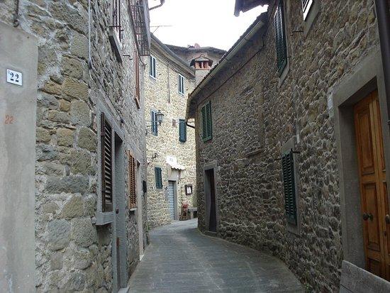Ortignano Raggiolo, Italia: Ruelle du village