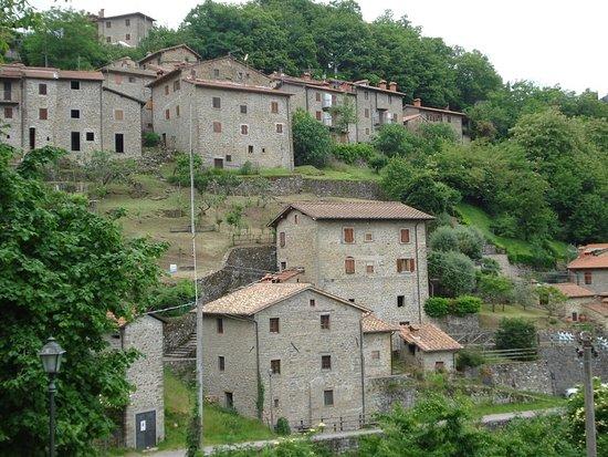 Ortignano Raggiolo, Italia: Vue generale