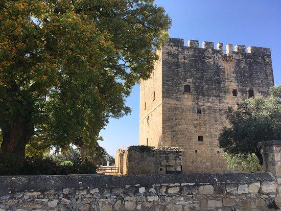 Kolossi Castle: Замок