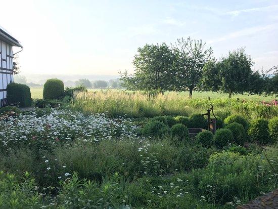 Nieheim, Germany: angrenzende Felder und Wiesen