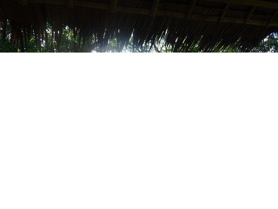 Charmant ce salon de Jardin au Parasol très Coloré - Picture of ...