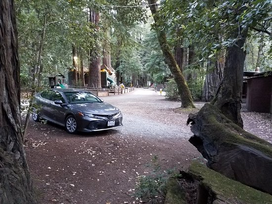 Redwoods River Resort & Campground: 20180604_200113_large.jpg