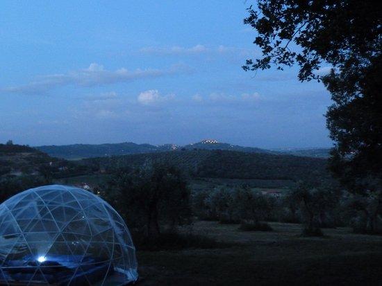 Casale MilleSoli: Un'esperienza di Ecoturismo Emozionale, immersi nella natura. casalemillesoli.it