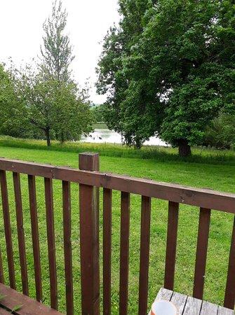 Ashwater, UK: View from Woodpecker Lodge