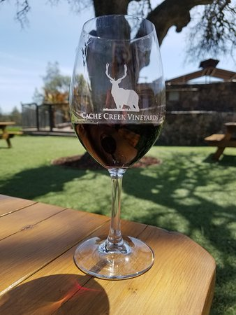 Clearlake Oaks, CA: A lovely spot for a sip of wine and to relax under the trees.